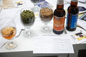 Пиво и ингредиенты